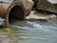 В сточных водах госпиталей аккумулируются устойчивые к антибиотикам штаммы