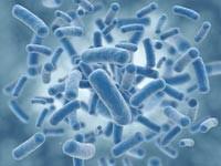 Основным источником микробов в воздухе является человек