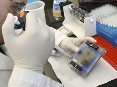 Эксперты назвали причину холеры в Мариуполе