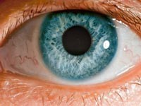 По глазам можно определить склонность к болезням кожи