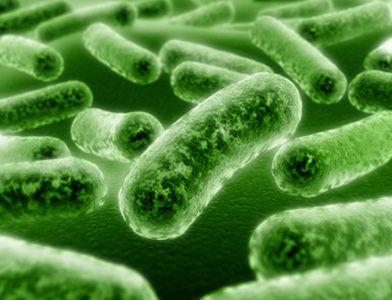 Безобидные болезни станут смертельно опасными