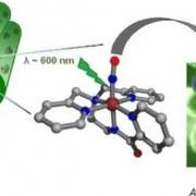 Светочувствительное соединение выделяет окись азота, уничтожая устойчивую к антибиотикам бактерию