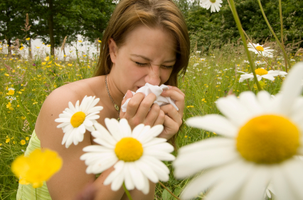 Восемь главных болезней лета