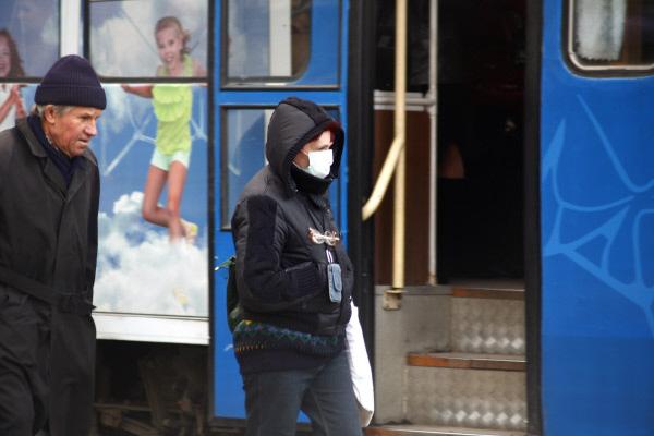 На Камчатке выявлено 12 случаев заболевания «свиным гриппом»