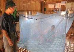 Экспресс-анализ на малярию недостаточно точен: ученые критикуют коллег из ВОЗ
