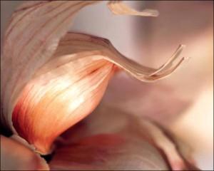Геморрой и причины его появления