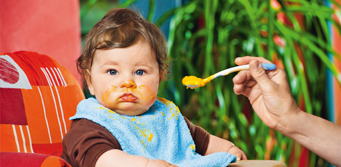 Первые овощи для вашего малыша (овощные пюре ХИПП)