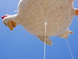 Минсельхоз США: курица от Foster Farms может служить источником сальмонеллеза