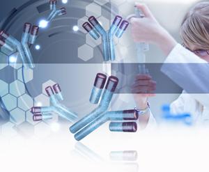 Моноклональные антитела могут быть использованы как анти-ВИЧ-терапия