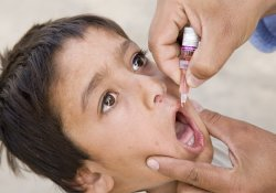 Полиомиелит не пройдет: на Ближнем Востоке началась массовая вакцинация детей
