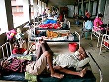 Холера, вызывающая эпидемии сегодня, не похожа на холеру из XIX века