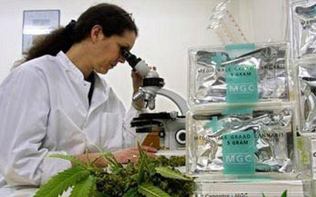 Ученые выяснили, что марихуана поможет в борьбе с ВИЧ