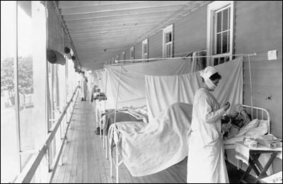 Источником пандемии гриппа 1918 года были лошади?