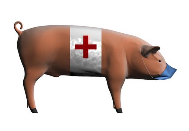 Пять человек погибли в результате вспышки инфекции «свиного гриппа» в доме милосердия на западе Грузии