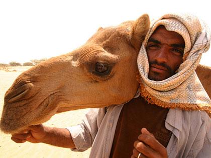 В Саудовской Аравии число инфицированных MERS-CoV превысило 300 человек