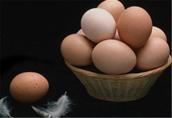 Разработчикам вакцин предложено отказаться от куриных яиц