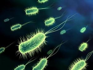 Чем опасны скрытые инфекции