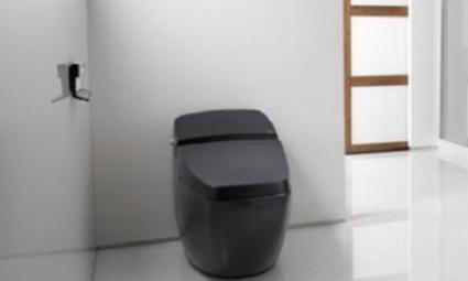 ВОЗ хочет изобрести высокотехнологичный туалет для избавления от холеры, тифа и глистов
