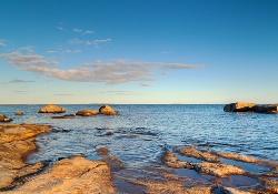 Балтийское побережье атакует «брат» холерного вибриона