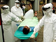 Нетипичные способы передачи вируса Эбола вполне реальны
