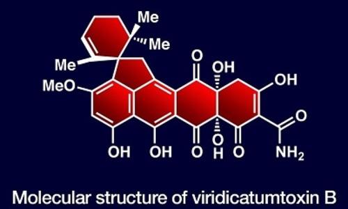 Новый синтетический антибиотик поможет в борьбе с устойчивостью бактерий