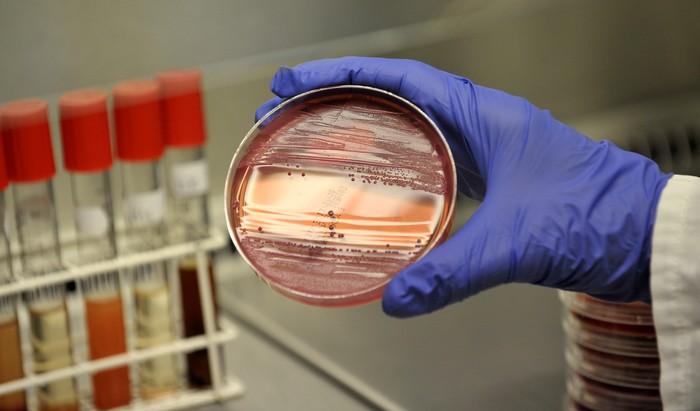 Вспышка острой кишечной инфекции зафиксирована в сургутской школе №31