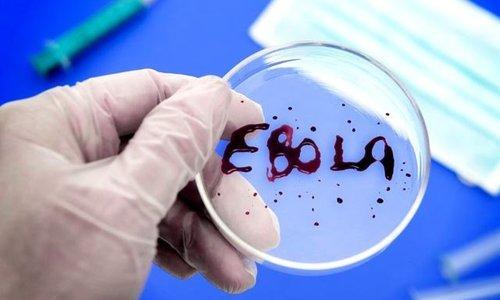 В Красногорске прошли тренировочные занятия с вводом условного больного с подозрением на лихорадку Эбола