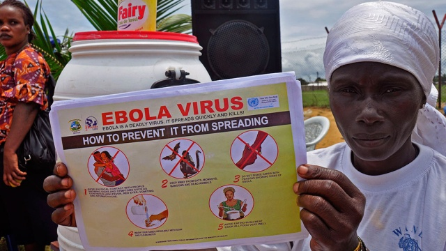 Лихорадка Эбола – обычный вирус или биологическое оружие?