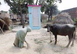 В Индии детские санитарные патрули отучат взрослых от дефекации на улицах