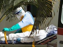 Лихорадка Эбола может поставить крест на Кубке Африки по футболу