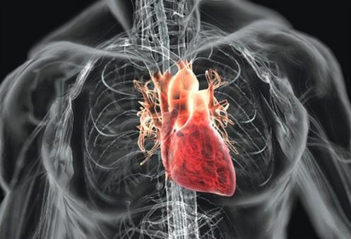 Пороки сердца: врождённые и приобретённые