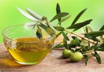 Самые лучшие рецепты с оливковым маслом