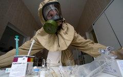 В России созданы спецбригады для борьбы с лихорадкой Эбола