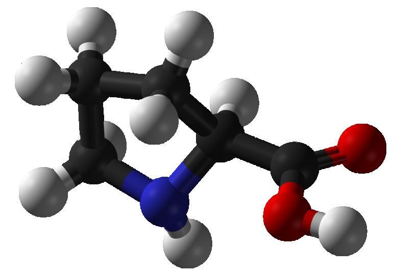 Аминокислота D-серин препятствует размножению патогенного штамма кишечной палочки