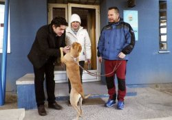 Медсестре, излечившейся от лихорадки Эбола, подарили новую собаку