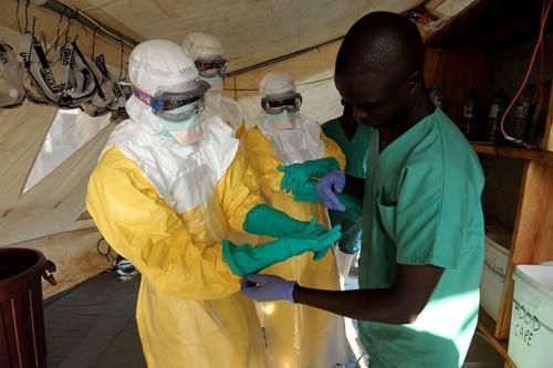 Число жертв вируса Эбола превысило восемь тысяч человек