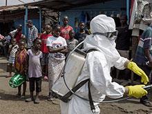 Эксперт отверг теорию Онищенко, назвавшего лихорадку Эбола экспериментом США