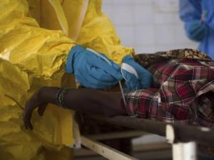 ВОЗ одобрила использование первого экспресс-теста на вирус Эболы