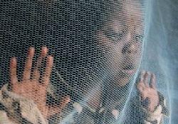 Устойчивые к лекарствам возбудители малярии – серьезная проблема