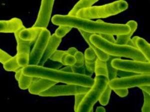 Личная гигиена больного туберкулезом