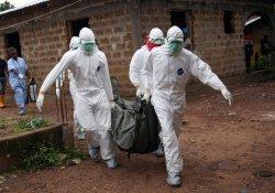 В Либерию вернулась вирусная лихорадка Эбола