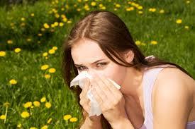Что приводит к повышению аллергена в организме женщин