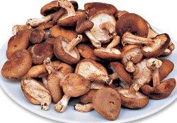 Вкусный эксперимент: грибы шиитаке способны повышать иммунитет