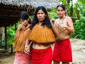 В отрезанных от мира племенах Амазонки найдена устойчивость к антибиотикам