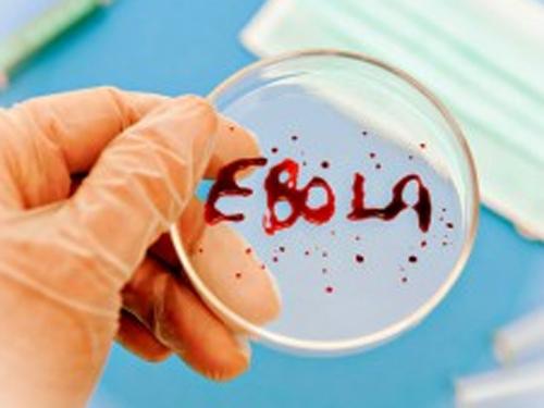 Ученые в США успешно испытали препарат против Эболы
