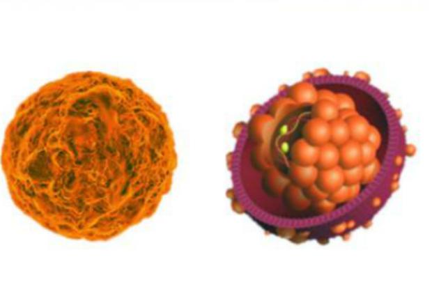 Ученые открыли эффективный препарат для борьбы с гепатитом В