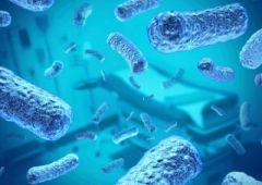 Нанолекарства победят резистентность бактерий