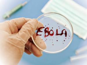 Первый случай заболевания Эбола зафиксирован в Италии