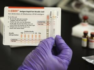 Экспресс-тест на вирус Эбола не используется в Западной Африке