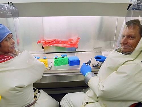 Новая вакцина защитила макак от вируса Эбола